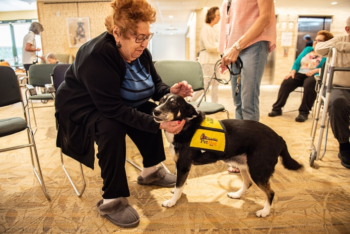resident petting a dog during